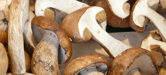 Hovězí guláš na houbách